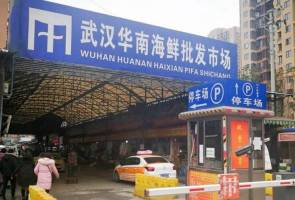Koronavirus: Pakar kesan sampel positif 2019-nCoV di pasar haiwan eksotik Wuhan