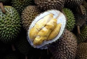 Fama, Shopee lancar jualan durian dalam talian pertama di Malaysia
